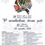v-aradackom-festival-6